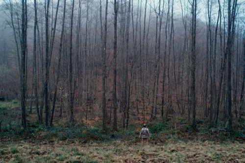 ennemi public forêt.jpg