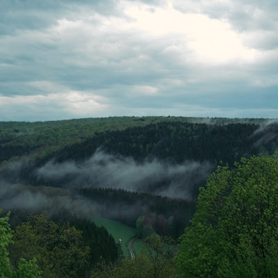 la treve brume.jpg