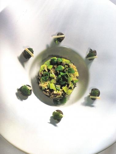 Risotto champêtre de petits gris de Namur à la coriandre façon Pierre Wynants