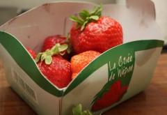 Chèvre, coulis fraises-tomates, sorbet à la pastèque (8).jpg