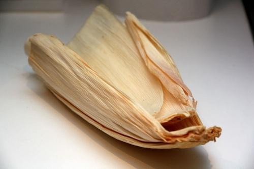 Feuilles maïs2.jpg