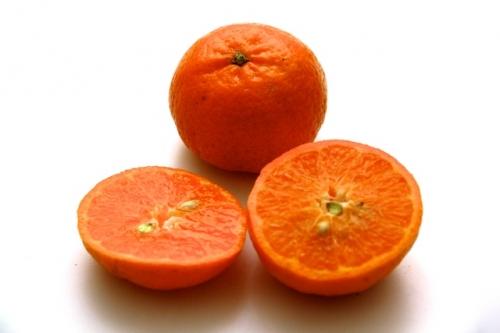 Mandarine Oriental 6.jpg