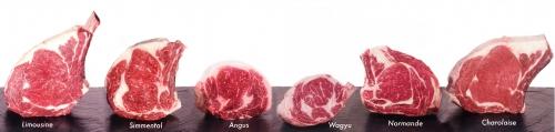 Le bœuf dans tous ses états