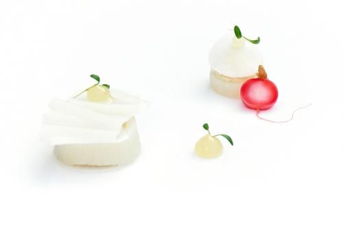 culinaria2,culinaria 2012,culinaria bruxelles,culinaria tour & taxis