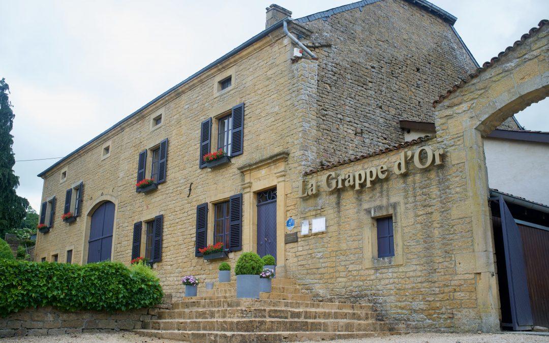 La grappe d'or: Clément Petitjean, aventurier culinaire