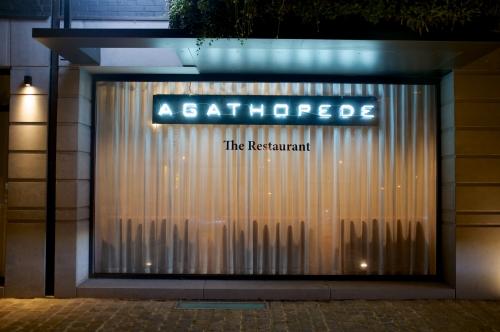 Agathopède : un nouveau talent à découvrir