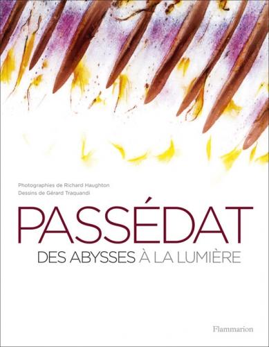 Livres de recettes, Jamie Oliver, Gérald Passédat, Des abysses à la lumière, Jamie en 15 minutes