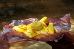 sri lanka,cuisine sri-lankaise,spécialités sri-lankaises,ceylan