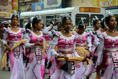 Nos bonnes adresses sri-lankaises