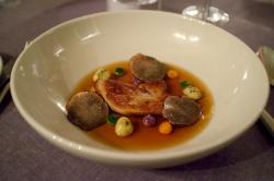 truffe noire,tuber melanosporum,truffe de provence