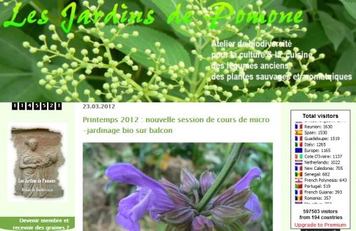 idéees recette; fines herbes; herbes du jardin