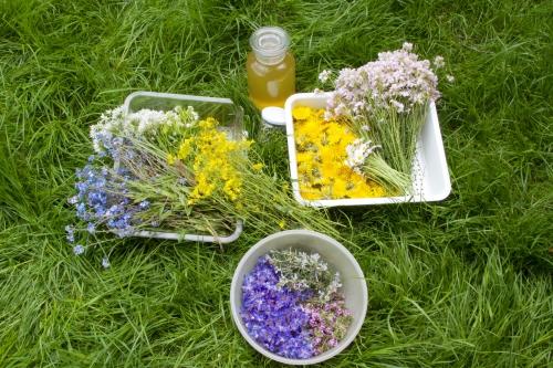 Assiettes en fleur