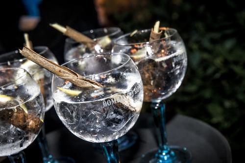 Imagin, Bombay Sapphire, gin & tonic, gin tonic, bar Bruxelles