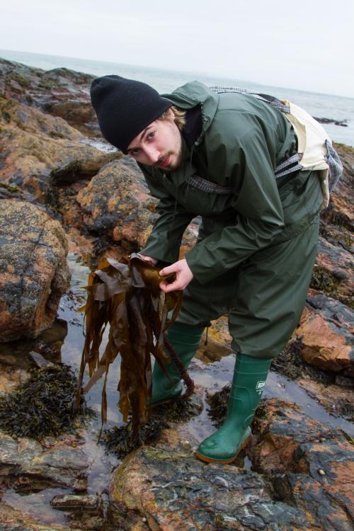 Islay Botanist-11.jpg