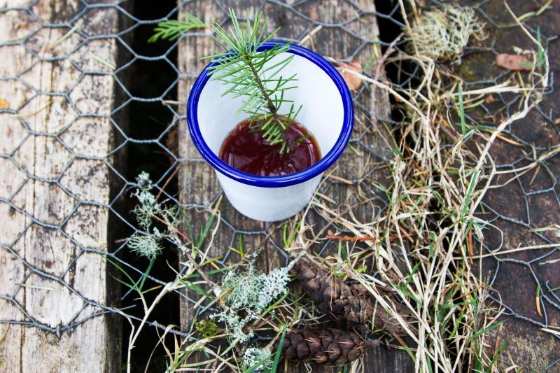 isaly,ecosse,gin,bruichladdich,botanist