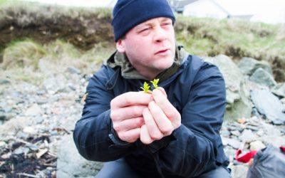 A la cueillette… du gin sur Islay