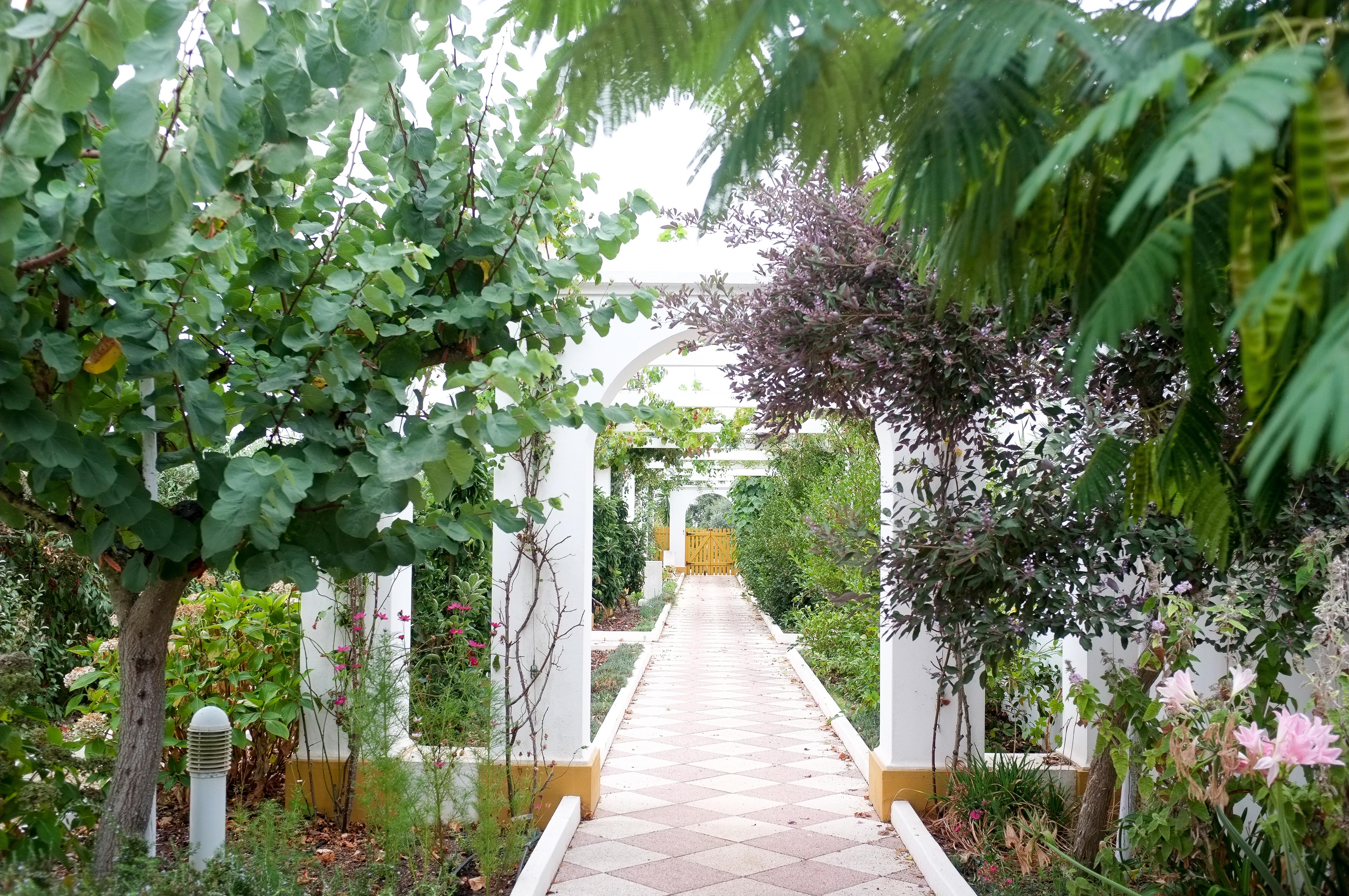 Le superbe jardin ibéro-mauresque de Jean-Paul Brigand et Ann Kenny.