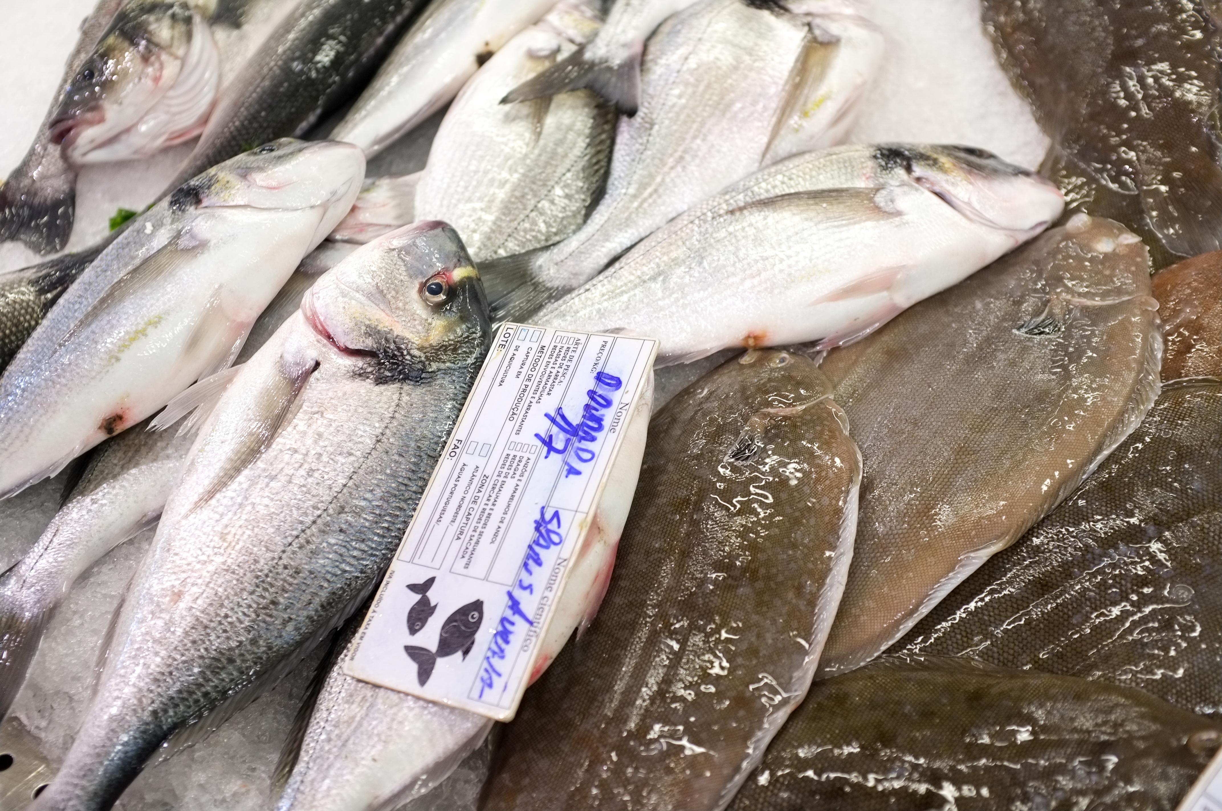 Marché poissons-4
