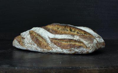 Futur de la gastronomie 2: Notre pain quotidien