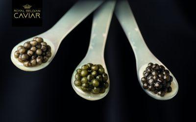 Et si on goûtait à un caviar hennuyer?